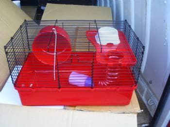 hamster/musebure