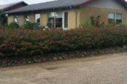 Hus i Redsted på Mors sælges