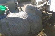 granit fugl