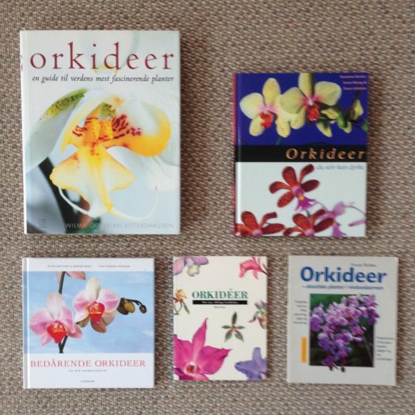 Bøger om Orkideer - Danmark - Alle bøgerne er i fin stand Den store bog min pris 50 ,- De andre 40,- - Danmark