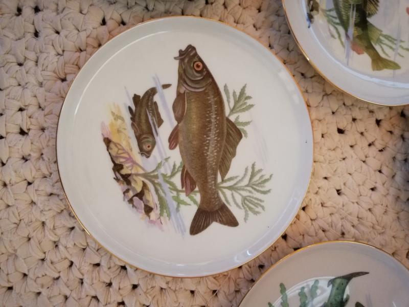 Fiske tallerkner