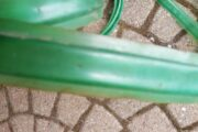 Drivhus slange