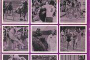 Skive-egnens sport 1975