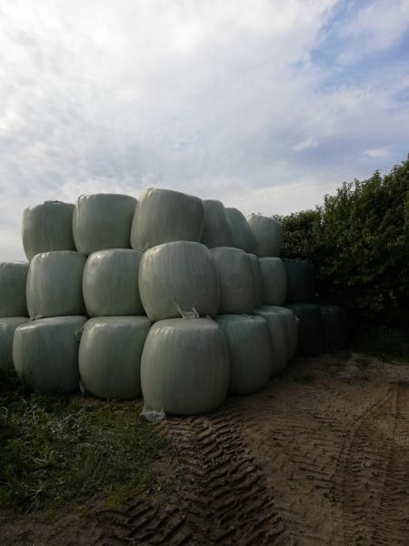 Wrap hø - Herningvej - Wrap hø i rundballer sælges - Herningvej