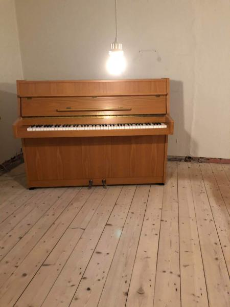 GRATIS klaver