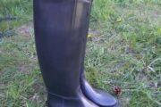 Nye ridestøvler str 39, 40 ,41