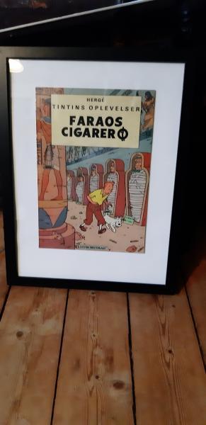Tintin billede