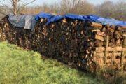 Købet løvtræ, klar til brug