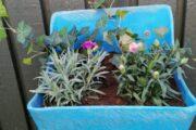 Blomster kummer