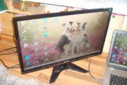 24″ Led skærm