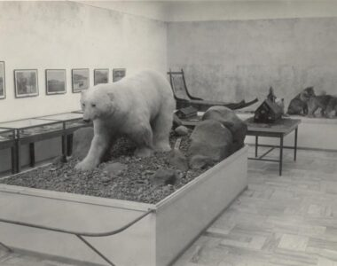 Grønlandssamlingens betydning for Skive Museum