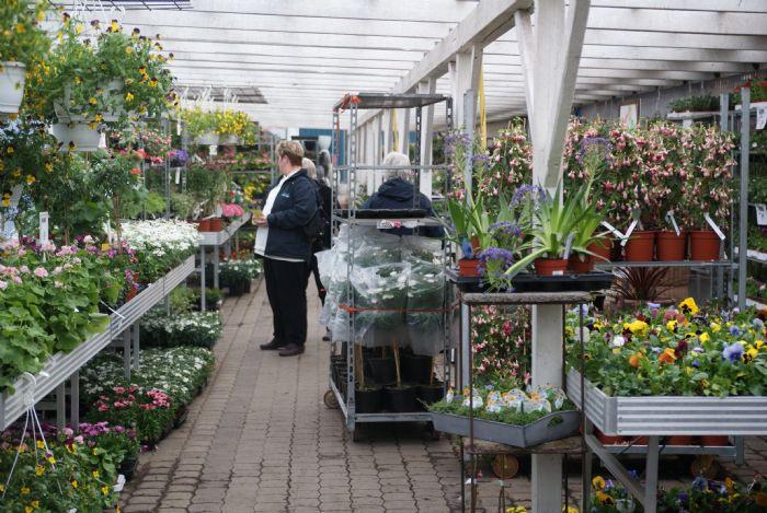 Udflugt til Jespers Planteskole. - den lokale hjemmeside for Skive-egnen
