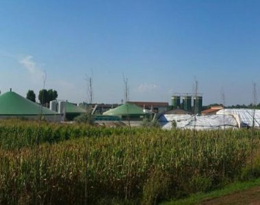 Stort potentiale i biogas