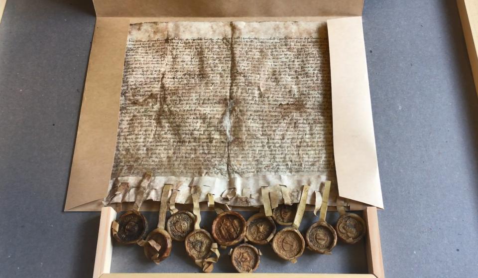 Amatørarkæolog finder ridders personlige segl