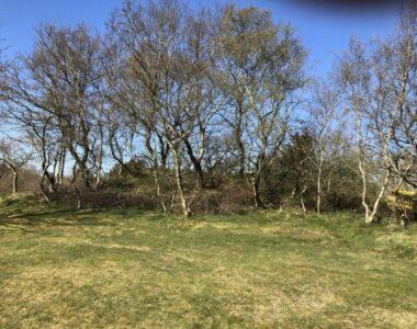 National Fortidsmindedag 2021: Bronzealderhøjene ved Hald