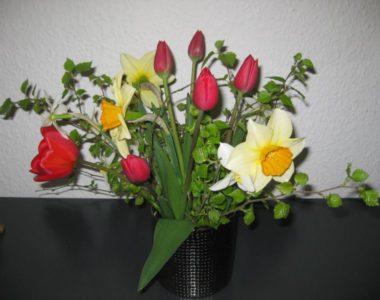 Forårsfest på Selde Ældrecenter