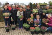 Lions: Endnu engang rekord i salg af tulipaner