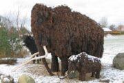 Kig forbi fur museum og spøttrup borg i vinterferien