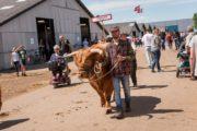 Lokale dyr blandt landets bedste